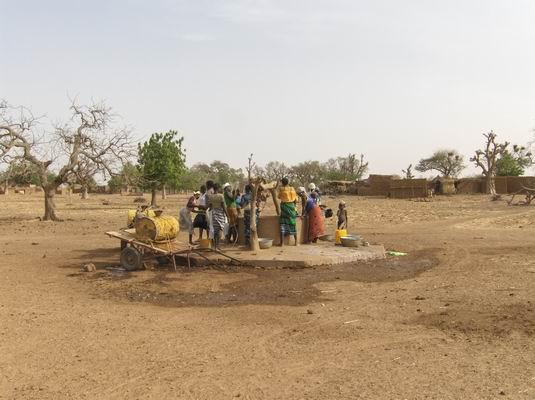 Filly Yatenga Mars 2007