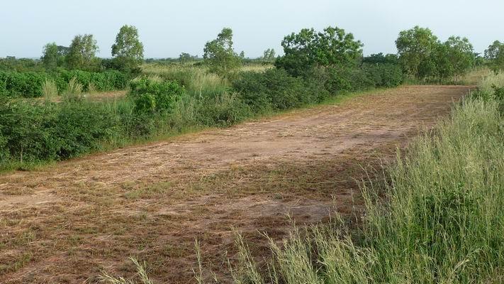 Bocage Guie Sahel