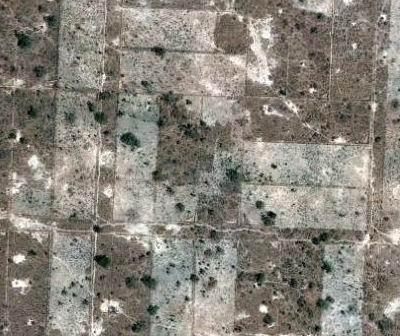 Parcellaire perimetre bocager Sahel